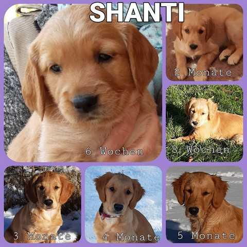 AD_Shanti_