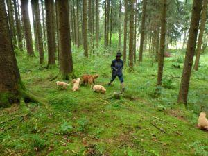 2_b_die_Mädels__beim_Waldspaziergang