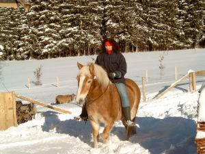 h_Winter_2003
